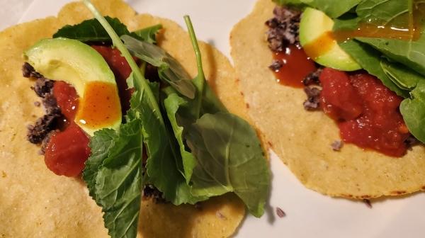 tortillas homemade